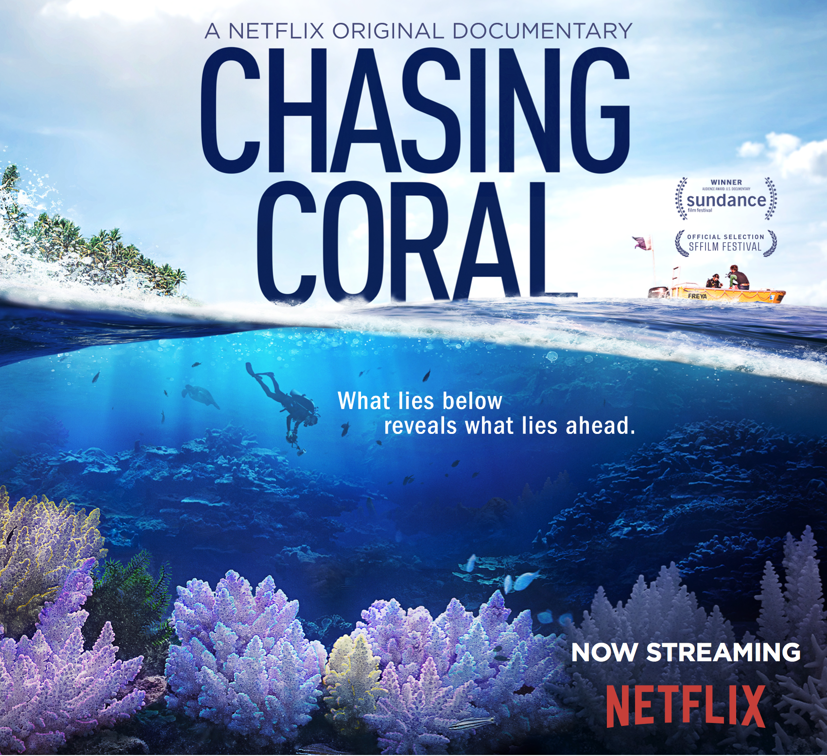 Chasing Coral at The Lock Up - © Wildscreen 2015